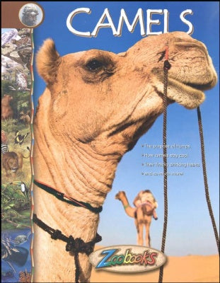 Camels - Zoobooks
