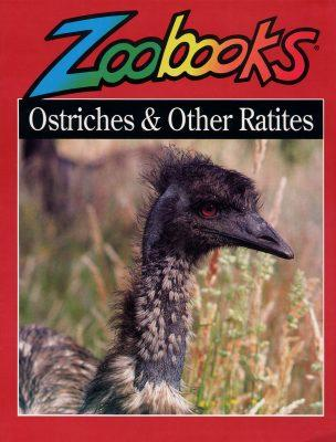 Ostriches and other Ratites - Zoobooks