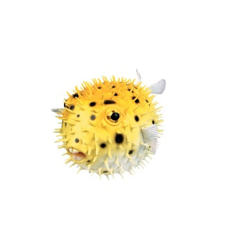 Porcupine Fish Squirt