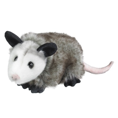 Opossum (Conservation Critters)