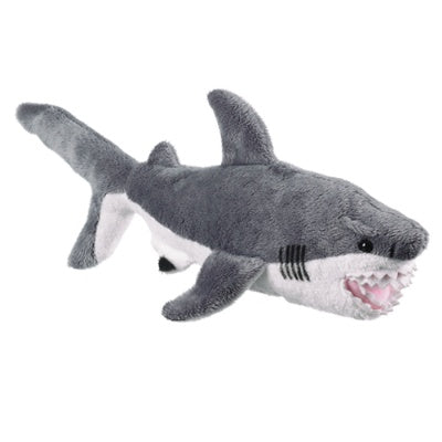 Great White Shark  (Conservation Critters)