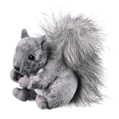 Squirrel (Conservation Critters)