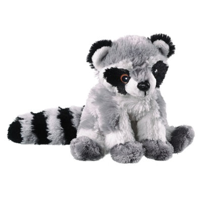 Raccoon (Conservation Critters)