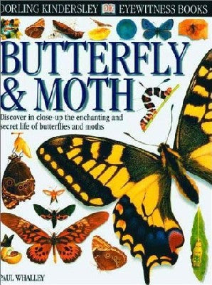 Eyewitness Books: Butterfly and Moth
