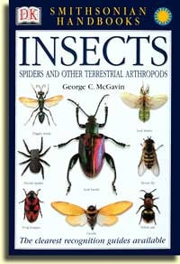 Insects (Smithsonian Handbooks)