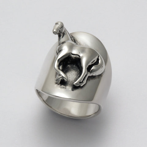 Show Horse Ring