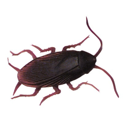 RealisticToy Cockroach (Bulk Pack of 12 Roaches)