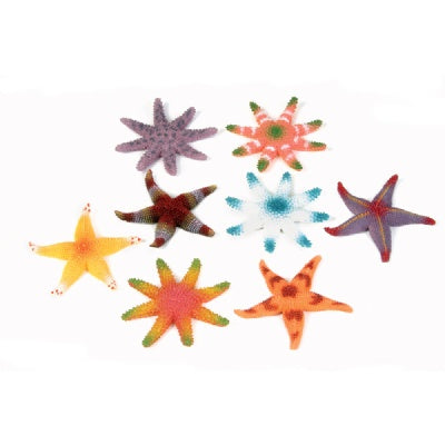 12 Starfish (Large 3-inch PVC)
