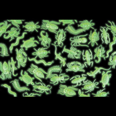2.5-inch Glow-In-The-Dark Insects & Reptiles (1 Piece)