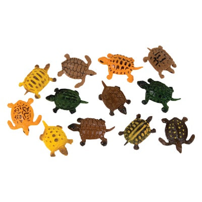 1.5-inch Turtle (Bulk Pack of 12 Turtles)