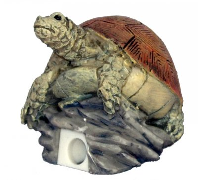 Turtle Pencil Sharpener