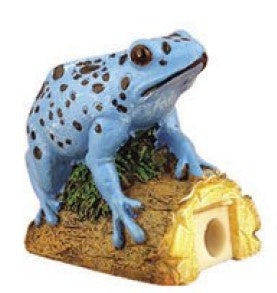 Blue Poison Dart Frog Pencil Sharpener