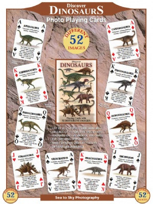 Discover Dinosaurs Playing Cards