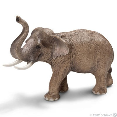 Asian Elephant, Male (Schleich: Wild Life)