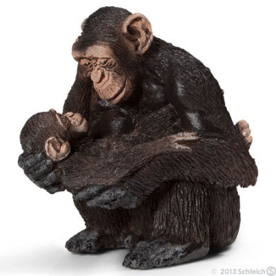 Chimpanzee Female with Baby
