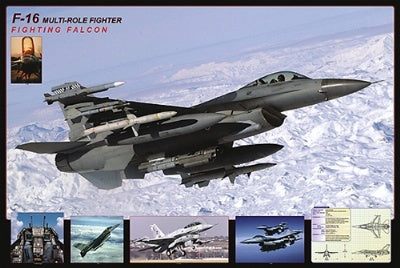 (E29) F-16 Fighting Falcon Poster
