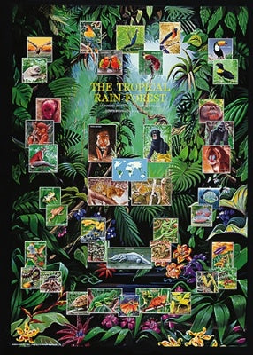 (E111) The Tropical Rain Forest Poster