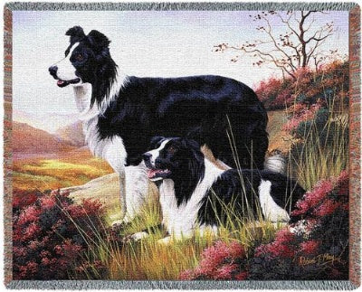 Border Collie (Tapestry Throw)