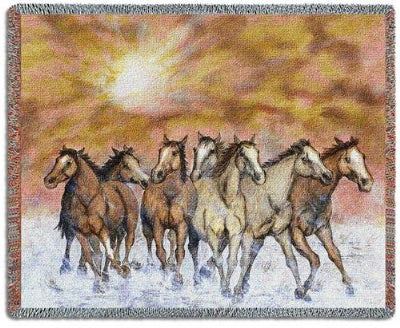 Sunset Run Tapestry (Tapestry Throw)
