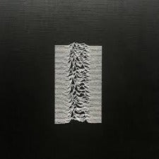 Joy Division | Unknown Pleasures