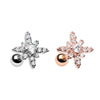 Rose Gold & Silver Dainty Twinkle Star Cartilage Tragus Earring-WildKlass Jewelry