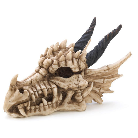 Snarling Magical Dragon Horns Skull Treasure Trinket Box