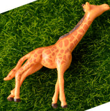 4 PC Exotic Giraffe Wild Safari Animal Miniature Garden Plants Terrarium Doll House Ornament Fairy Decoration AZ7987