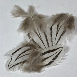Silver Pheasant Feathers V-Bar - Natural