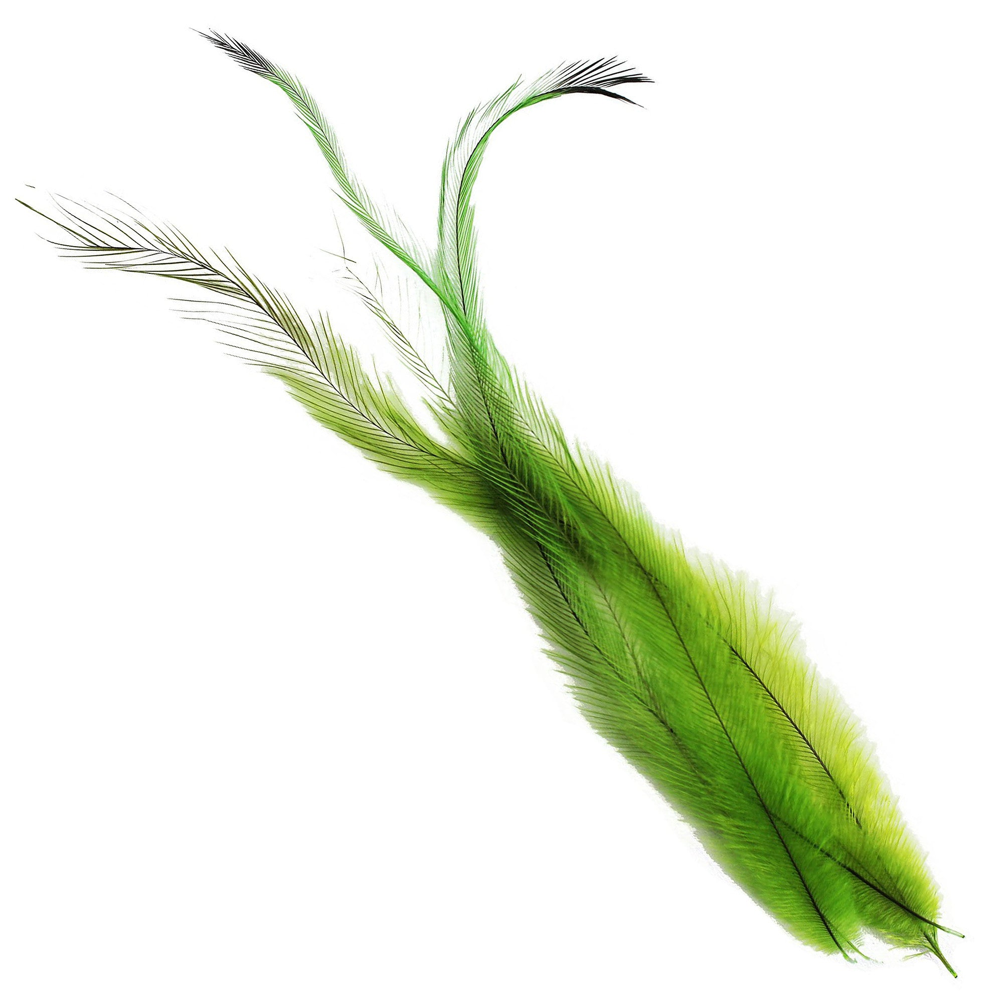 Spirit River UV2 Big Bird Emu Feathers