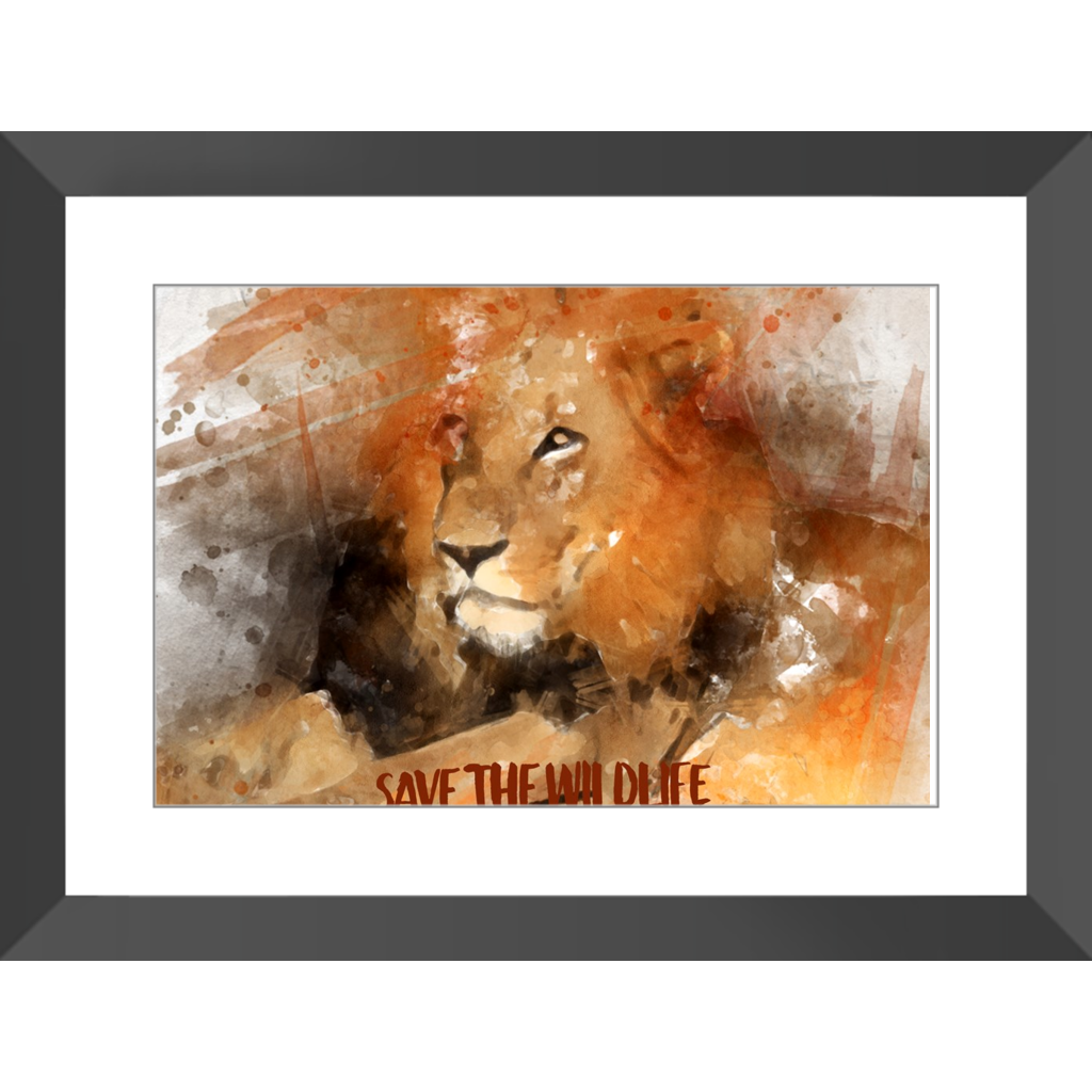 Beautiful Lion Print - Digital Water Color Technique - Framed Prints - Many Sizes - Save the Wildlife