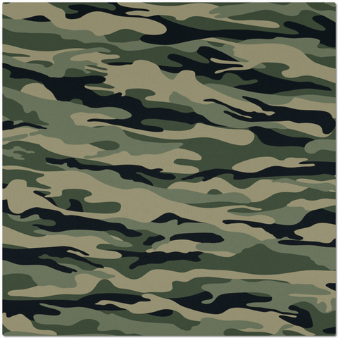 Camouflage Design Placemat