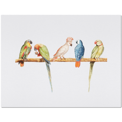 Placemat with Colorful Parrot Design