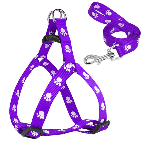 Image of Harness with Paw Prints for Small to Medium Dogs