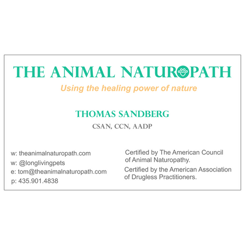 Image of T Sandberg Biz Card