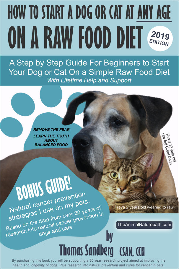 How to start a dog or cat at any age on a raw food diet