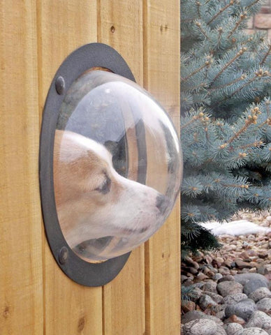 Image of Pet Fence Window lets your dog or cat peek through the fence.