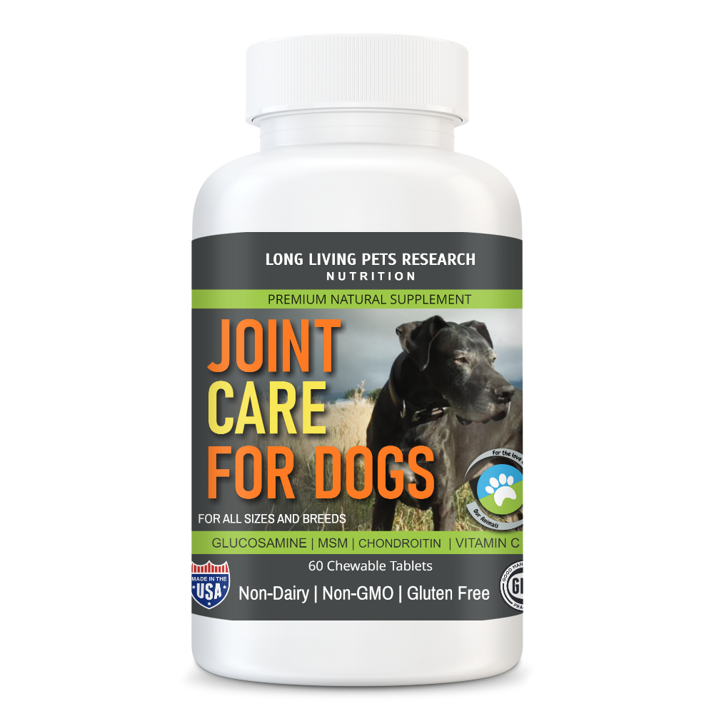 Joint Care For Dogs