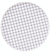 Black and White Grid Plates - Large