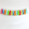Tissue Paper Tassel Garland Kit - Summer Days
