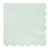 Pale Mint Simply Eco Large Napkin