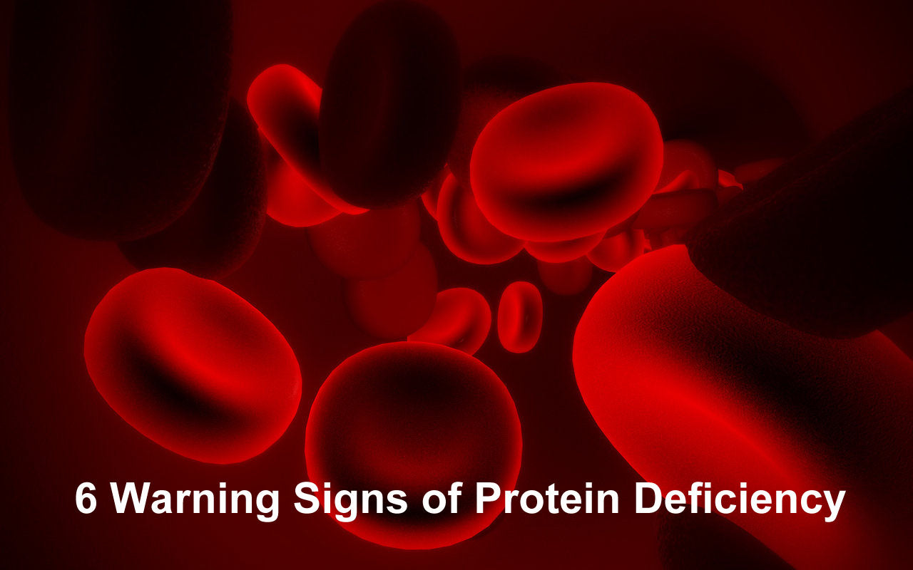 Protein:  the foundation of our health and six signs of deciciency