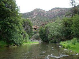 A Private Ethnobotanical & Plant Medicine Camping Trip for 5 People - For 5 Days -  In The Beautiful & Magical Southwest!