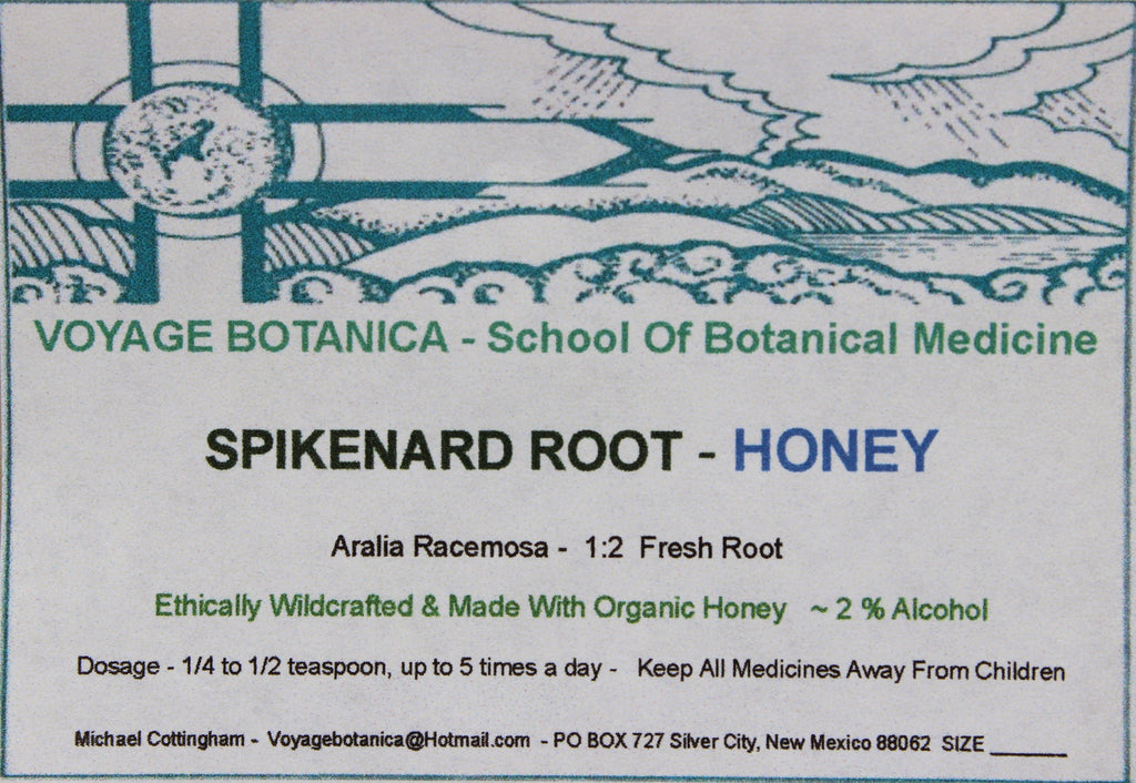 SPIKENARD ROOT HONEY - Aralia racemosa  -  4 ounce size