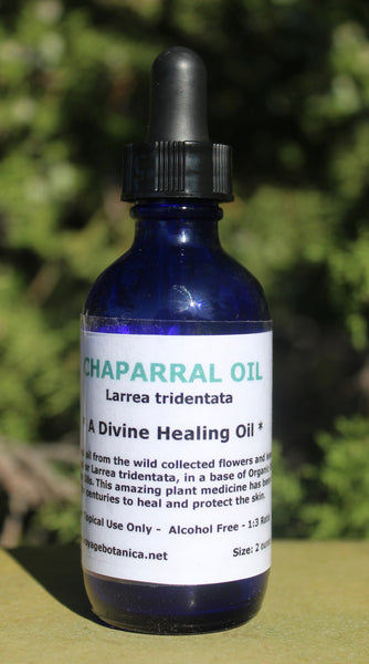 CHAPARRAL OIL - A Divine Healing Oil - 2 ounce size