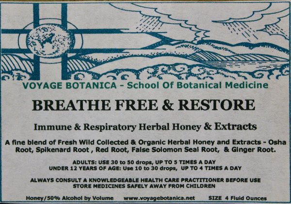 BREATHE FREE & RESTORE - Immune & Respiratory Herbal Honey & Extracts -  4 Ounce Size