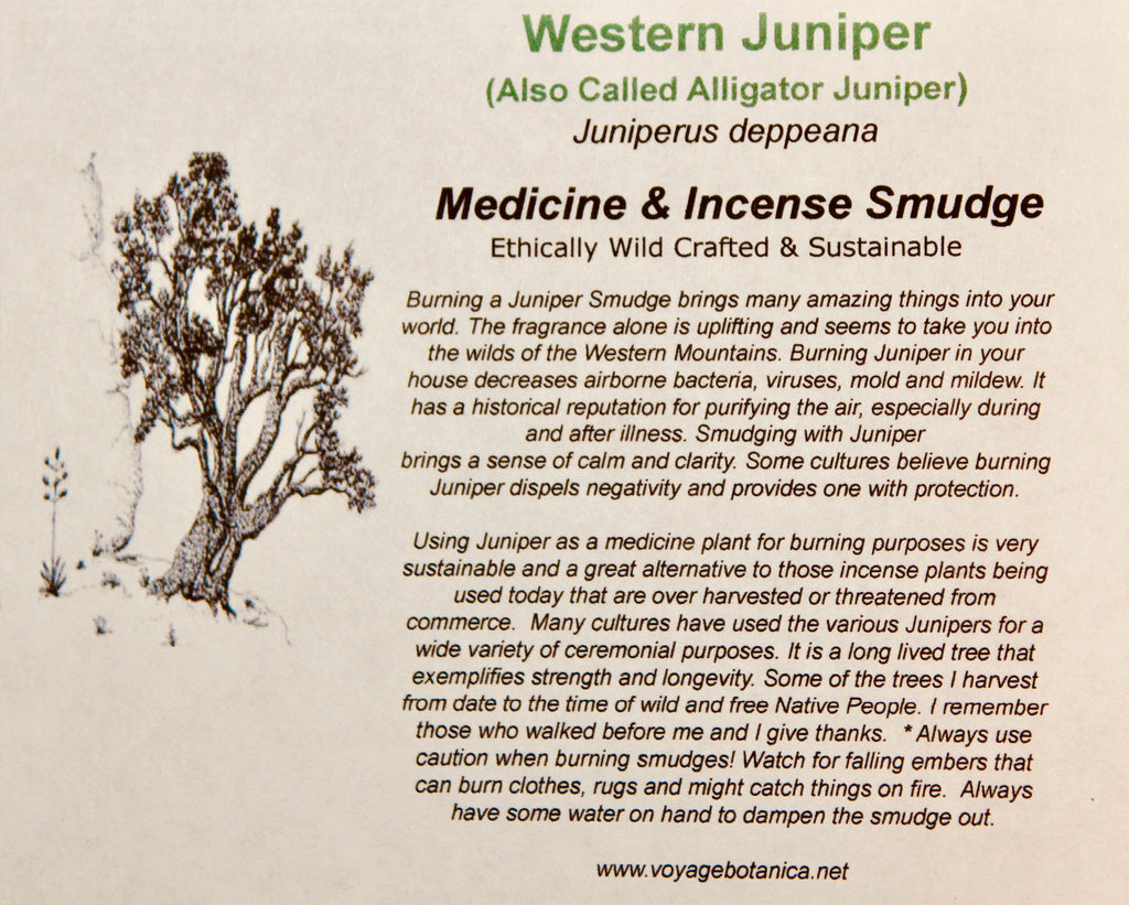 ALLIGATOR JUNIPER - Juniperus deppeana - Smudges for Cleansing, Blessing, Protection  (3 count)