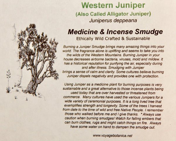 ALLIGATOR JUNIPER - Juniperus deppeana - Smudges for Cleansing, Blessing, Protection  (10 count)