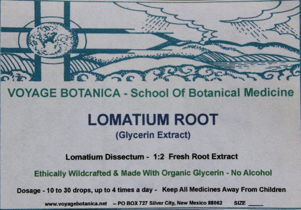 LOMATIUM ROOT - (GLYCERIN EXTRACT) - Lomatium dissectum - 2 Ounce Size *Alcohol Free