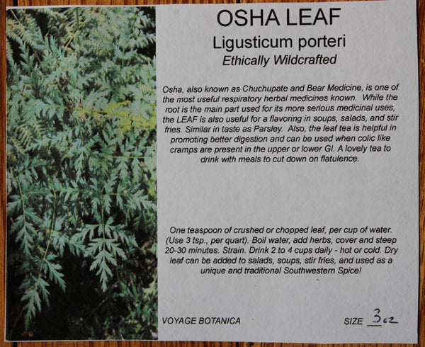 OSHA LEAF (Dry) - 3 Ounces - Seldom Available - Amazing Spice/Medicine Plant From The Southwest!  (New leaf on the rack drying, should ship by mid June!)