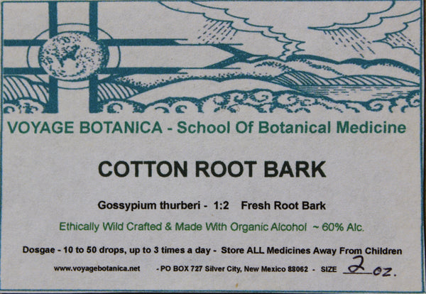 COTTON ROOT BARK - Gossypium thurberi - 2 Ounce Extract  ( Fresh Root Bark - 1:2)